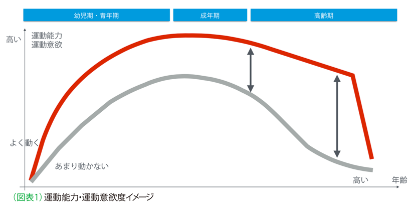 図表1 運動能力・運動意欲度イメージ